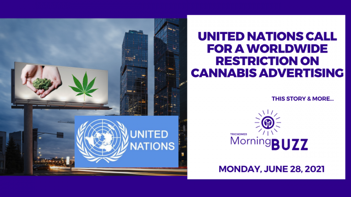 United Nations Call For a Worldwide Restriction on Cannabis Advertising | TRICHOMES Morning Buzz