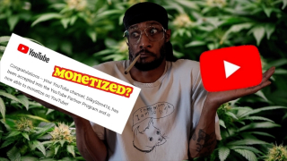 How To Monetize Your Cannabis YouTube Videos In 2021 (1 Step Monetization Process)