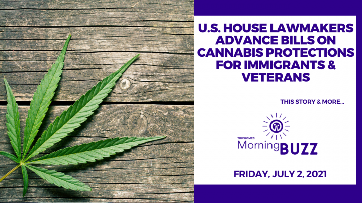 U.S. House Lawmakers Advance Bills on Cannabis Protections for Immigrants & Veterans | Morning Buzz