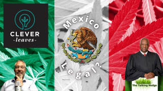 Mexico Is About to Legalize Cannabis, what's that mean for the U.S.?