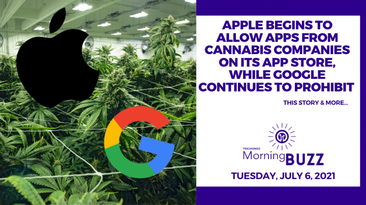 Apple Begins Allowing Apps From Cannabis Companies on its App Store, Google Continues to Prohibit