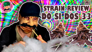 DO SI DOS 33 - STRAIN REVIEW (PURPLE WEED)