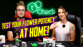 Test Your THC Potency At Home! tCheck2!
