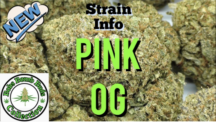 Pink OG, BC Bud Supply. Weed Review. Cannabis Strain Details.