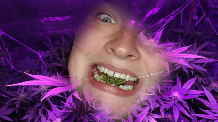 Let's talk about flossing and... weed?