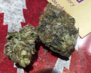 DO-SI-DOS OFFICIAL REVIEW SUPPLIED AND SPONSORED BY PEACEMAKER 420