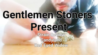 Strain Review: Candyland