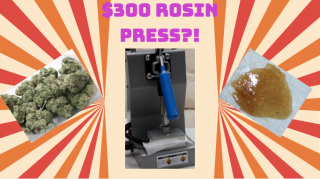 $300 ROSIN PRESS?! Squishing Nugs and Dabbing Rosin!
