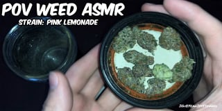POV Weed ASMR Grinding Up Some Pink Lemonade