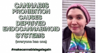 Cannabis prohibition causes deprived endocannabinoid system