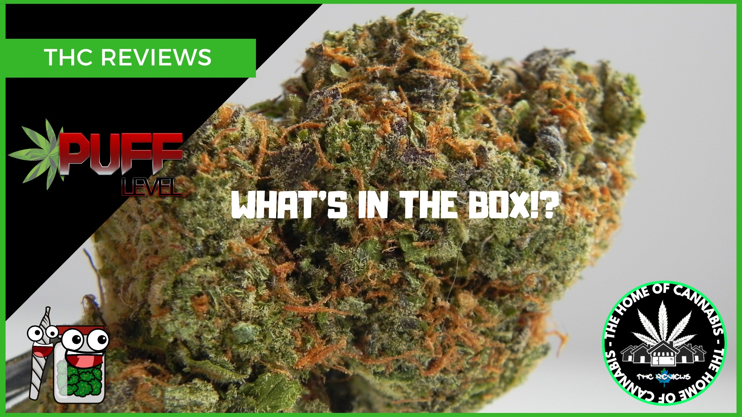 WHAT'S IN THE BOX? (QUAD FLOWER UNBOX - PUFF LEVEL)