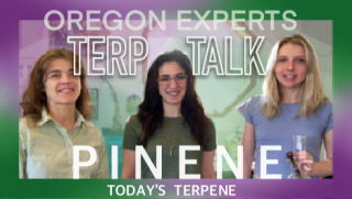 Pinene | Terp Talk