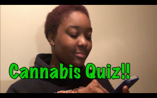 How much do I know about Weed in Canada? - Weed Quiz || PuffPuffGyal