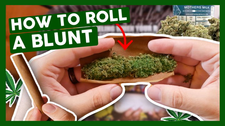 How to Roll a Blunt for Beginners