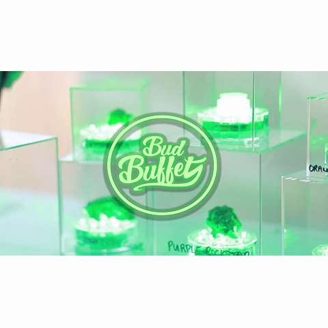 BUD BUFFET LUXURY MOBILE BUDTENDING