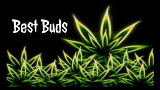 Best Buds Episode 2...The Trulieve product review