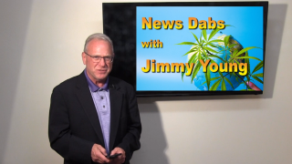 Cannabis News Dabs with Jimmy Young in Massachusetts and the world!