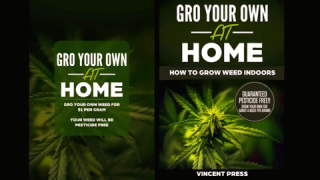 GRO Your Own at Home - How to Grow Weed Indoors