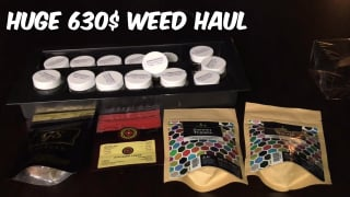 HUGE Canadian Weed Haul (630$)