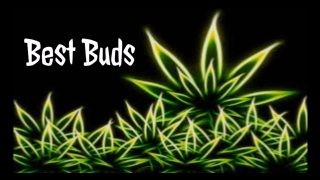 Best Buds Episode 4...Trulieve product review!
