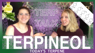 Terpineol | Terp Talk | Oregon Experts