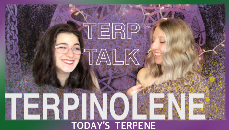 Terpinolene | Terp Talk | Oregon Experts