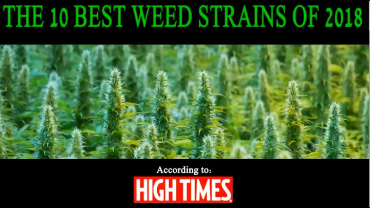 High Times Top 10 Best Strains of 2018