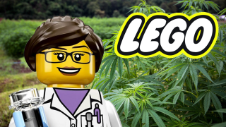 LEGO is Going Green, Social Media Giants Continue to Cut off Cannabis Companies On This Week's Canna News
