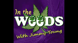 The state of Cannabis in Massachusetts with Marion McNab & Stephen Mandile
