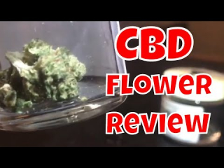 Black Tie CBD Flower review - Smokable CBD Flower