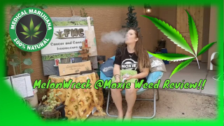 Melonwreck Cannabis Distalite Weed Review From @Moxie
