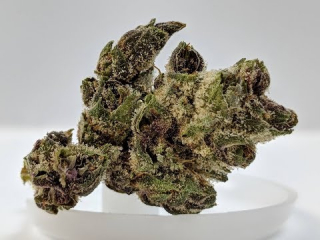 [OCS] Purple Chitral Woodstock Indica Review | 5/5 | safebud.wiki