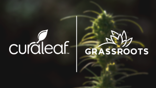 Curaleaf Holdings Acquires Grassroots Cannabis