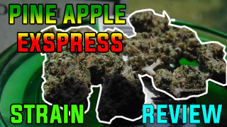 PINEAPPLE EXPRESS STRAIN REVIEW 2019