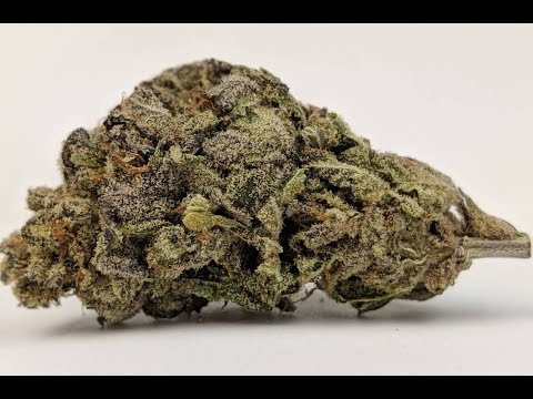 [Ganja West] Purple Punch Hybrid Indica Review | 3.8/5 | safebud.wiki