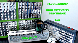 Growing Cannabis Indoors: Grow Lights (LED, HID, CFL)