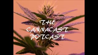 The CannaCast Potcast Episode 4 Indica vs Sativa