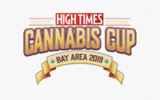 Cannabis Cup : Bay Area 2019 Recap // The Green Lab