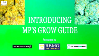 Introduction to MP's Grow Guide (Sponsored by Mars Hydro, Remo Nutrients and Urban Greenhouse)