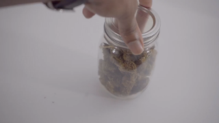 How to keep your weed fresh