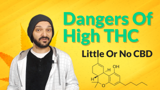 High THC | Zero CBD | Why I Believe This Could Be Dangerous