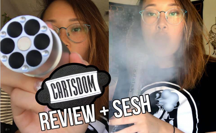 BEST CARTRIDGE STORAGE?! | Cartsdom Review + Sesh