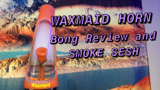 Waxmaid +Horn Silicone & Glass Hybrid Water Pipe