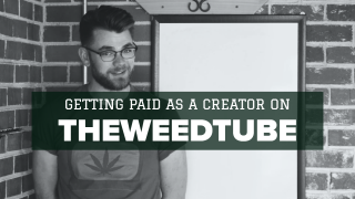 CREATOR PAYOUTS ON TWT EXPLAINED