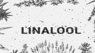 TerpeneTuesday - Linalool