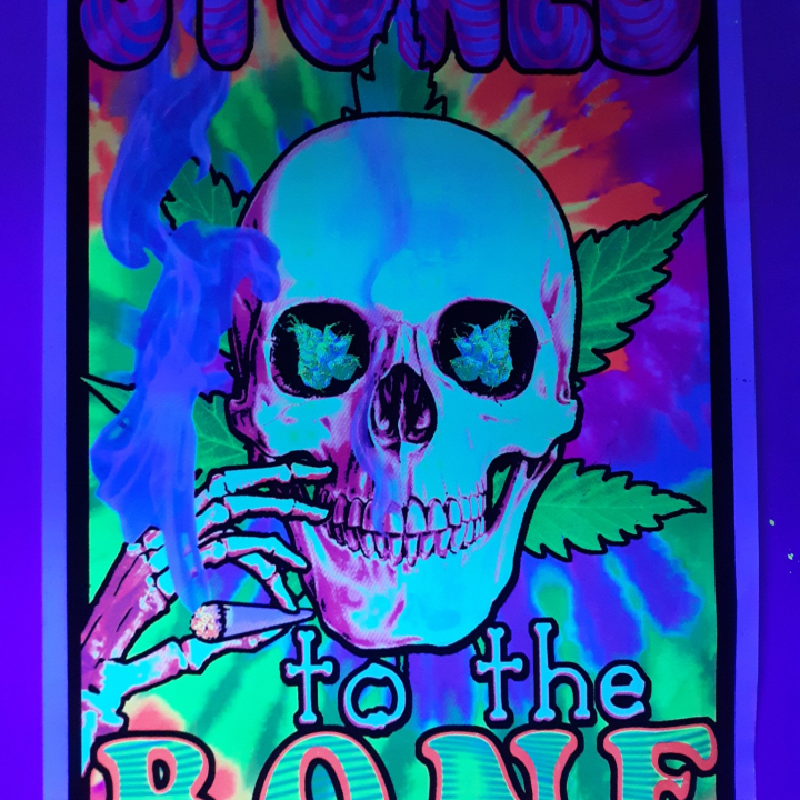 Stoned to the bones ! Smoking out of 8 bongs !