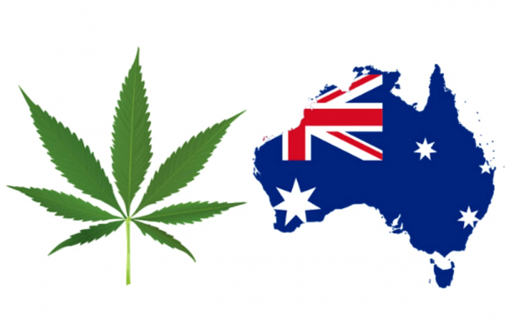 Cannabis Set to Be Legalized in the Australia Capital Territory