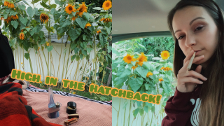 HIGH IN THE HATCHBACK EP. 5 // SUNFLOWER SESH!!