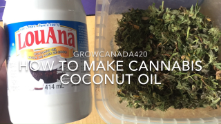 How to Make Cannabis Coconut Oil / Easy Edibles