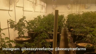 How To Build A Warehouse Grow EP.6